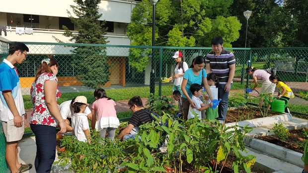 HDB Friendly Faces Lively Places Fund, growing a community through gardening in the Yuhua estate
